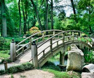 jardin tranquilo japones decoracion diez