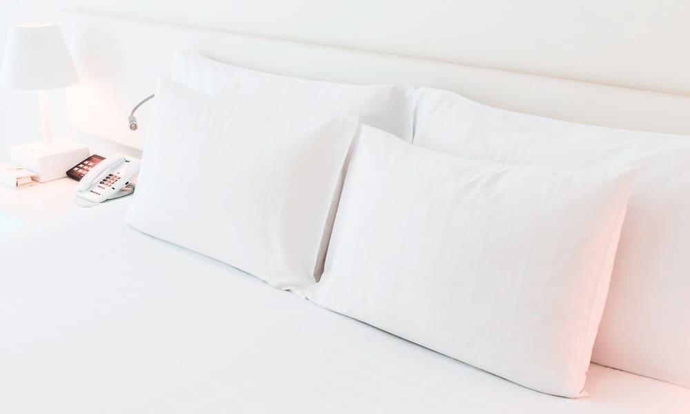 Las seis mejores almohadas de Aloe Vera